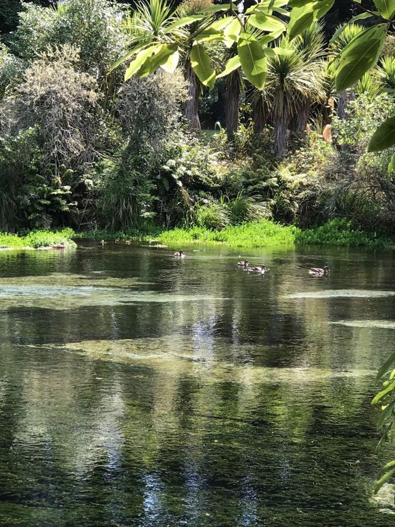 Alongside the peaceful water
