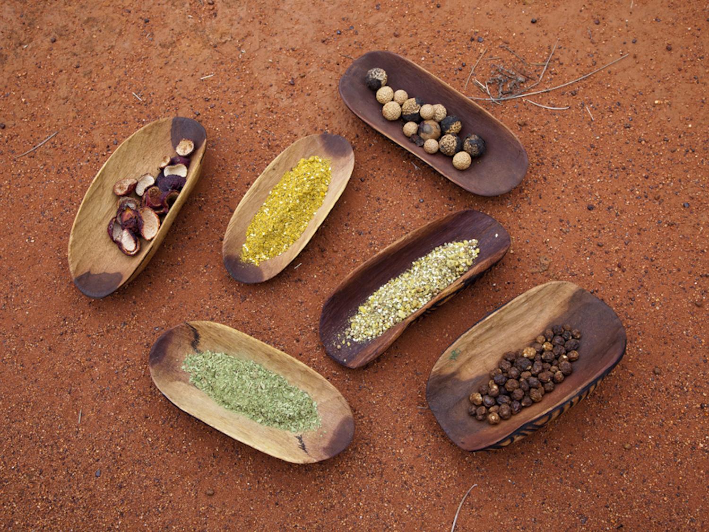 Aboriginal bush tucker