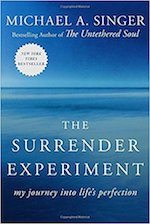 Book - The surrrender experiment